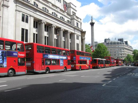 Buses line up before a signal at Trafalgar Square, London. You can see Nelson's Column standing high in the background