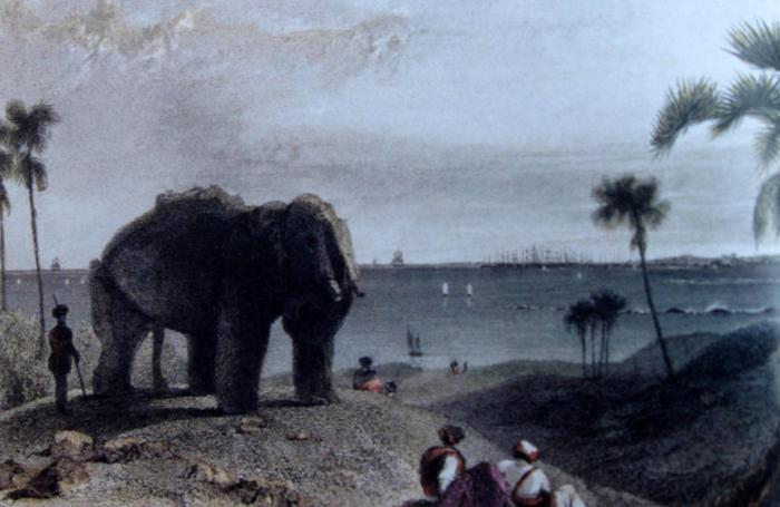 Aquatint of the Stone Elephant by Thomas Daniell and William Daniell, 1786. Photo Courtesy: Elephanta by George Michell