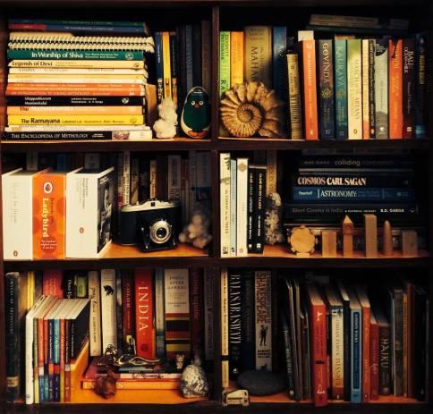 One of my bookshelves