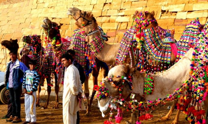 All decked up and ready for the Desert Festival, Jaisalmer