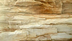 Wood Fossils, Akal, Jaisalmer, Travel, Rajasthan, Geology