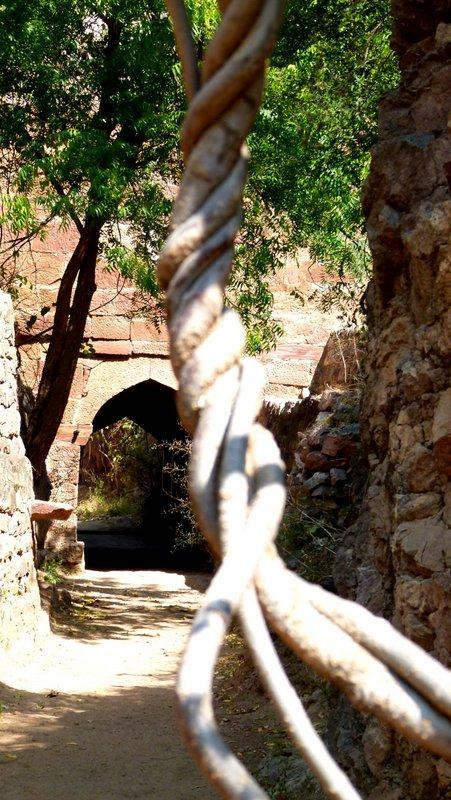 Rao Jodha Desert Rock Park, Jodhpur, Rajasthan, Travel, Mehrangarh Museum Trust