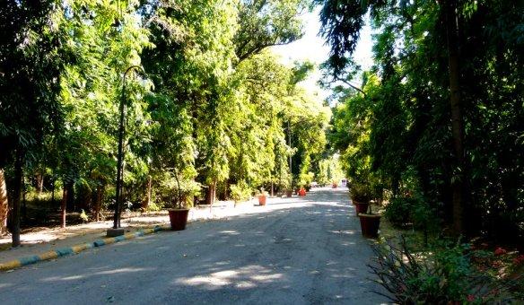 Udaipur, City of Lakes, Lake Pichola, City Palace