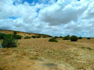 Jaisalmer, Thar Desert