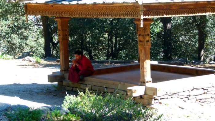 Sacred spaces, Roadside Shrines, Temples, Himachal Pradesh, Travel, Devbhoomi, Sacred Grove, Buddhist Monk