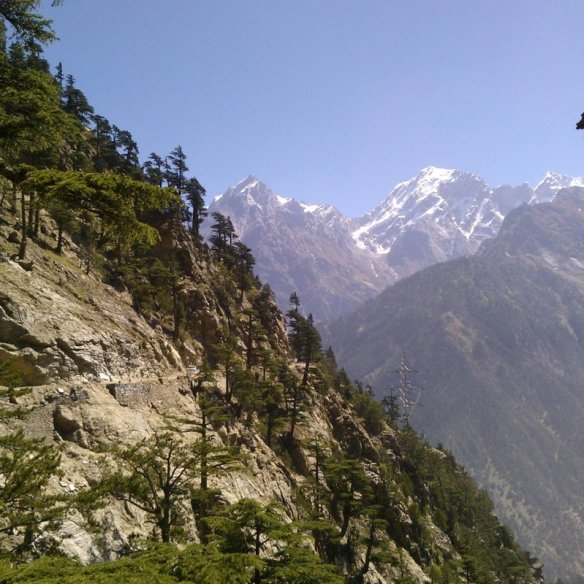 Kalpa, Trek to Dalhousie's Cottage, Travel, Himachal Pradesh, Kinnaur