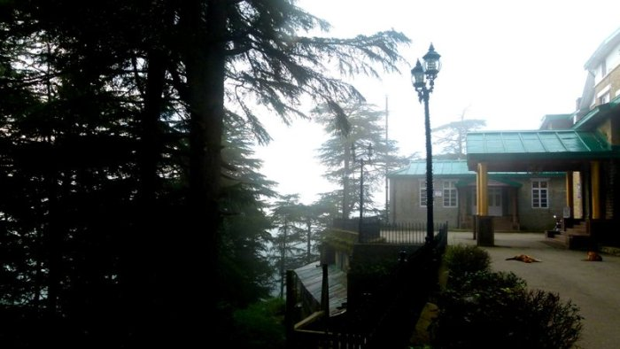 Chail, Chail Palace, Himachal Pradesh, Travel
