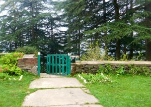 Chail, Chail Palace, Himachal Pradesh, Travel