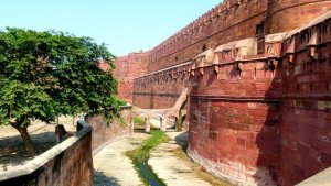 Agra Fort 21