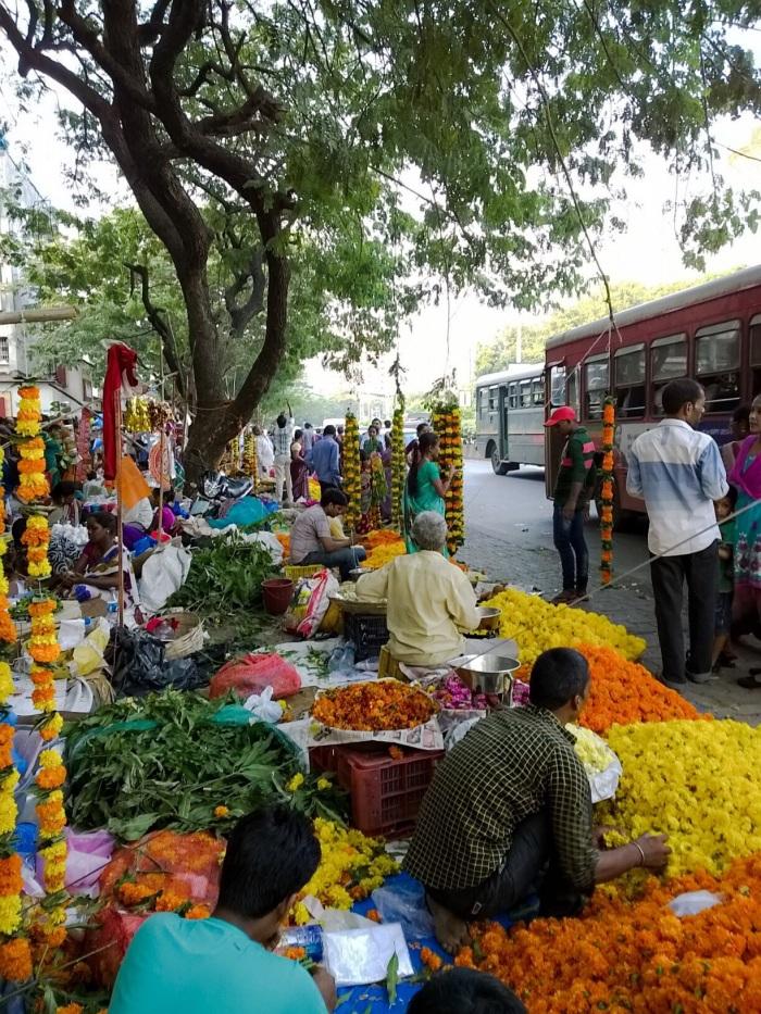 Marigold, flowers, Diwali, Nokia lumia 1020