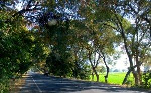 Ambaji, Road Trip, Palanput to Danta