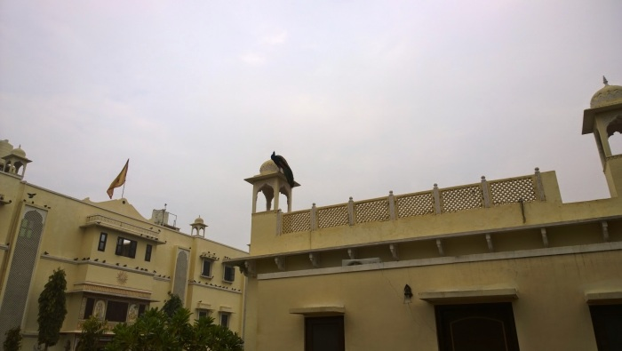 Club Mahindra, Nawalgarh, Painted Towns of Shekhawati, Fresco, Art Gallery, Painting, Heritage, Travel, Rajasthan, trip Planner