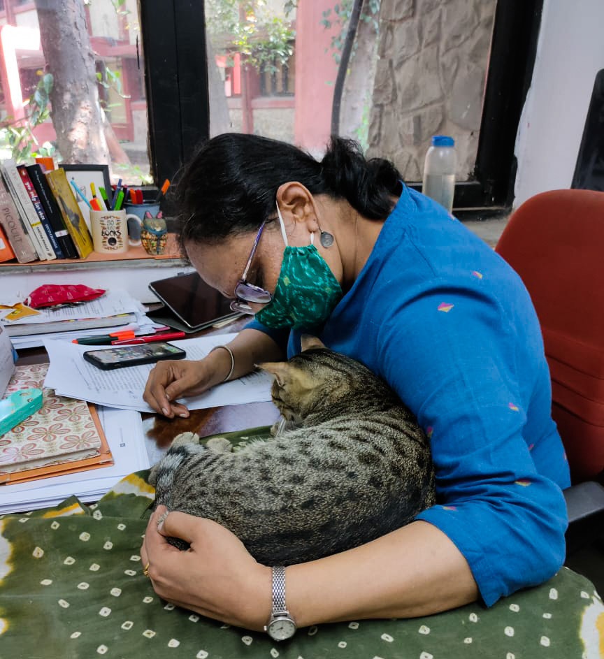 Guddu Billa, Cat Cuddles, Pet Therapy, Stress Buster